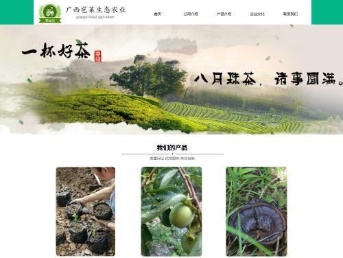 网站制作案例:广西岜莱生态农业-奇迪科技(深圳)有限公司