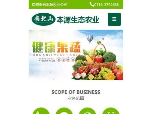 网站制作案例:湖北省本源生态农业有限公司-奇迪科技(深圳)有限公司