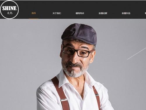 网站制作案例:shine文化-奇迪科技(深圳)有限公司