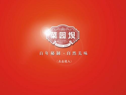 网站制作案例:菜园坝-奇迪科技(深圳)有限公司