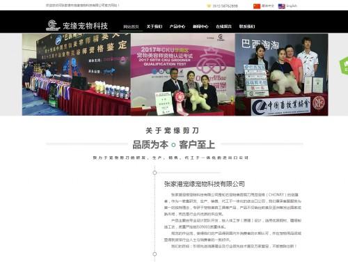 网站制作案例:CY剪刀-奇迪科技(深圳)有限公司
