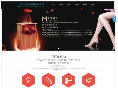 网站制作案例:上海艺岚电子商务有限公司-奇迪科技(深圳)有限公司