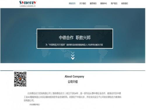 网站制作案例:北京德信合力咨询有限公司-奇迪科技(深圳)有限公司