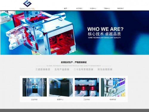 网站制作案例:正沃实业(上海)有限公司-奇迪科技(深圳)有限公司