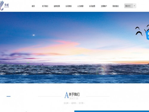 网站制作案例:华威技术服务有限公司-奇迪科技(深圳)有限公司