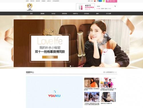 网站制作案例:中山市金稻电器有限公司-奇迪科技(深圳)有限公司