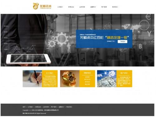 网站制作案例:深圳龙鳞资本管理有限公司-奇迪科技(深圳)有限公司