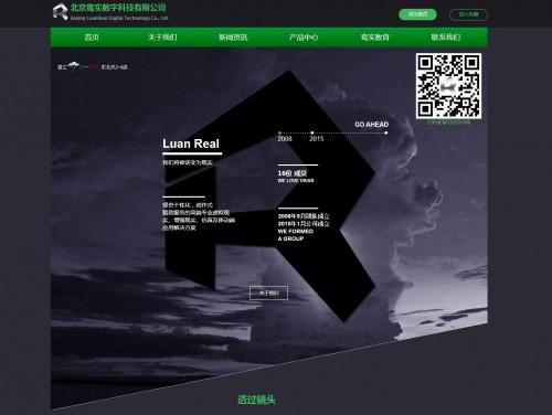 网站制作案例:鸾实数字科技-奇迪科技(深圳)有限公司