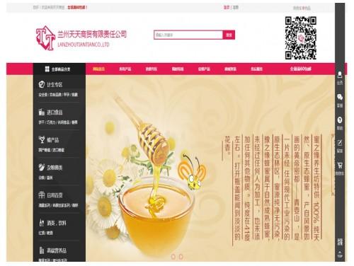 网站制作案例:兰州天天商贸-奇迪科技(深圳)有限公司
