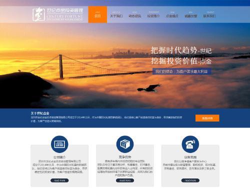 网站制作案例:深圳世纪点金投资咨询有限公司-奇迪科技(深圳)有限公司