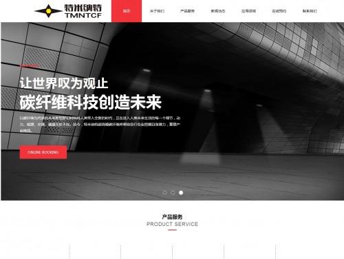 网站制作案例:北京特米纳特科技发展有限公司-奇迪科技(深圳)有限公司