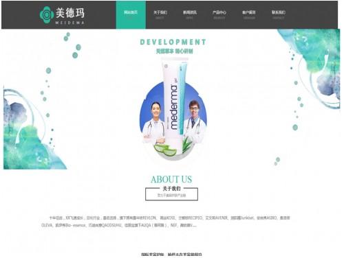 网站制作案例:美德玛-奇迪科技(深圳)有限公司