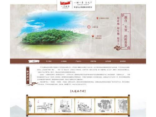 网站制作案例:江门社德陈皮茶叶有限公司-奇迪科技(深圳)有限公司