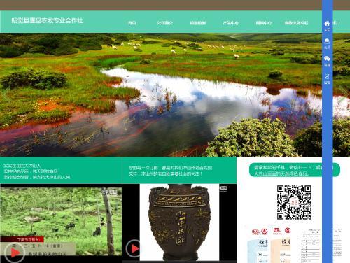 网站制作案例:昭觉县壹品农牧专业合作社-奇迪科技(深圳)有限公司