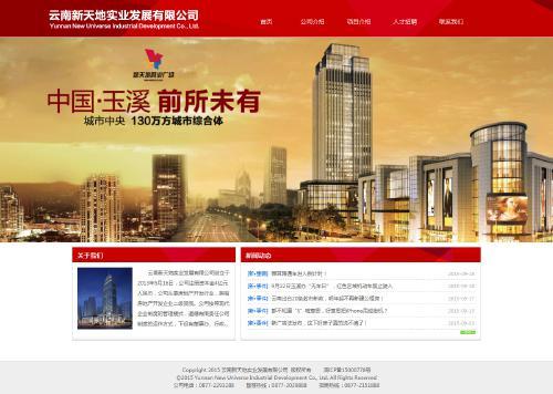 网站制作案例:云南新天地实业发展有限公司-奇迪科技(深圳)有限公司