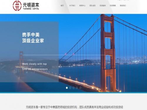 网站制作案例:元明资本-奇迪科技(深圳)有限公司