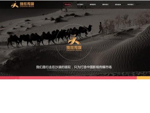 网站制作案例:臻欣文化传媒经济有限公司-奇迪科技(深圳)有限公司